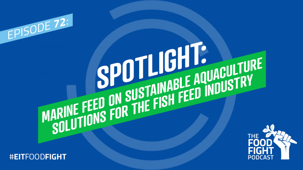 Spotlight: Marine Feed on sustainable aquaculture solutions for the fish feed industry