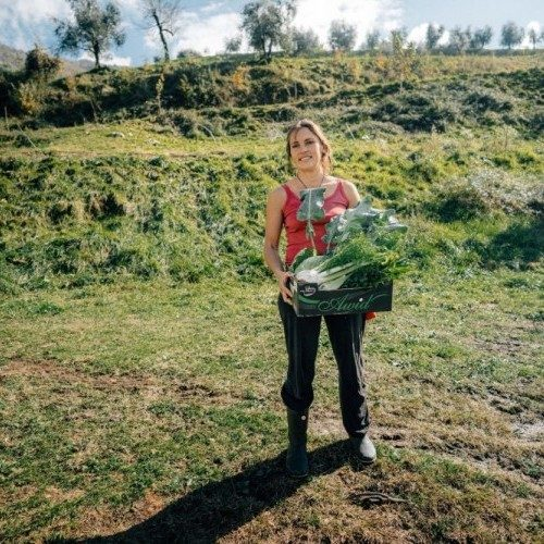 5 ways to accelerate the transition to sustainable agriculture